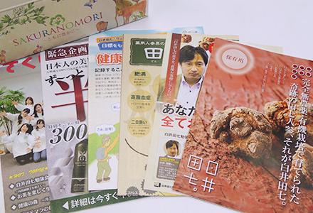 白井田七 同梱資料
